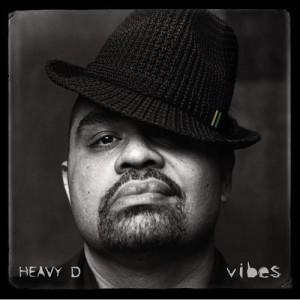 """Heavy D """"Vibes"""" album cover"""